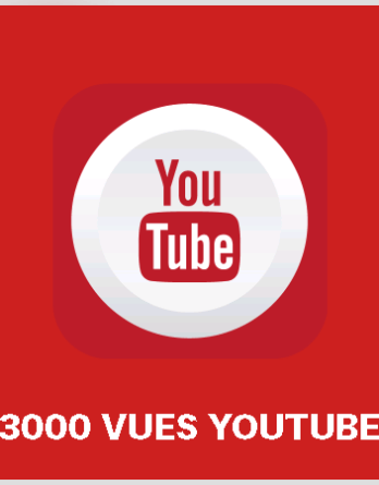 article 3000 vues youtube